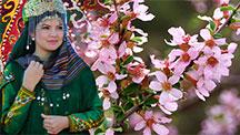 Nowruz - Oriental New Year Holiday