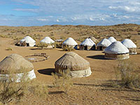 Safari Yurt Camp