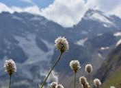 El pico Sabaj y Aksu