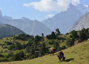 Pic Aksu, Pamir-Alai