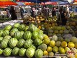 Дыни и арбузы. Бахчевые культуры Узбекистана