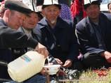 Кумыс. Древний напиток кочевников