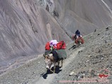 Delivery of goods to the Camp 1. Lenin peak, Pamir, Kyrgyzstan