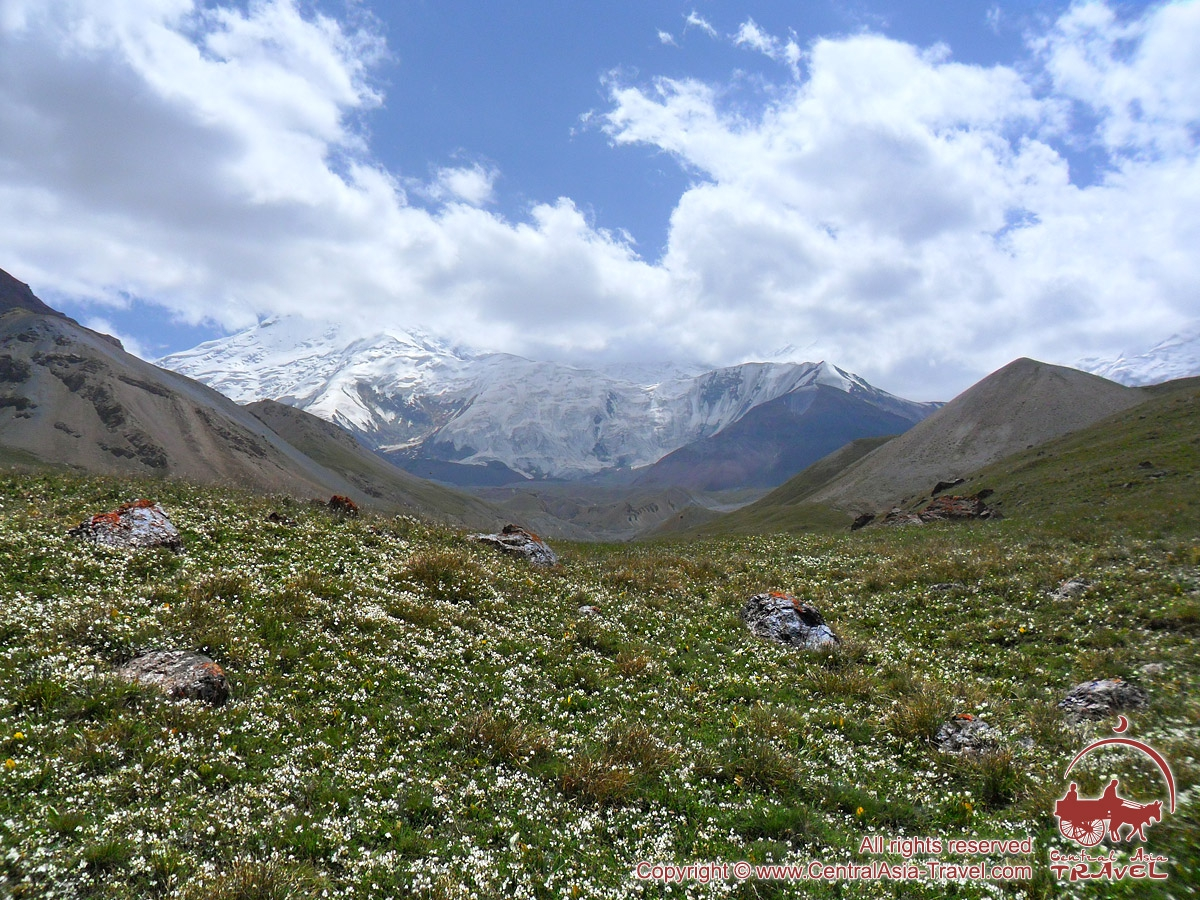 View on 19th Party Conference Peak (5945 m). Pamir, Kyrgyzstan