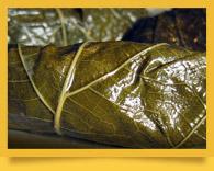 Долма по-узбекски. Как приготовить долму. Блюда узбекской кухни