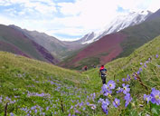 Vacation in the Pamirs