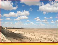 Пустыня Кызылкум Пустыни Узбекистана