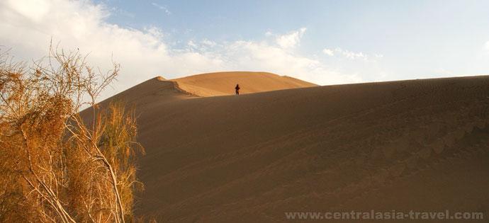 Dune chantante