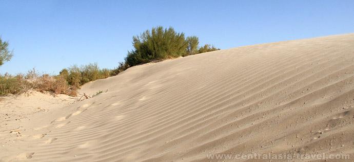 Le désert Kyzyl-Koum, Ouzbékistan
