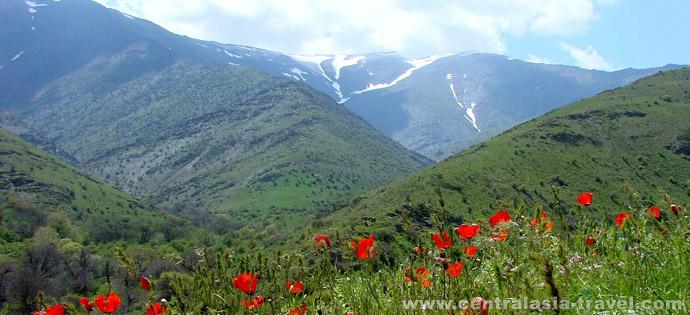 Нуратинские горы, Узбекистан. Туры в Узбекистан