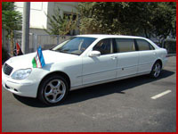 Mersedes-Benz Limo S-class 220-500