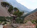 Aksu River. Pamir-Alay area, Kyrgyzstan