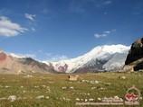 Lukovaya Wiese. Lenin Gipfel, Pamir, Kirgisistan