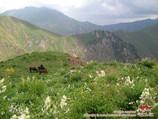 Перевал Ашуу. Тянь-Шань, Кыргызстан
