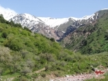 Инсентив тур в Ташкент - Опция 1