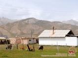 Алайская долина. Памиро-Алай, Кыргызстан
