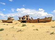 Barcos del desierto, Muinak