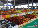 Узбекские фрукты. Базары Узбекистана
