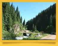 Chon-Ak-Suu gorge (Grigorievskoye gorge)