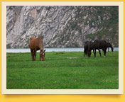 Horse-riding tour in Western Tien-Shan mountains of Kyrgystan