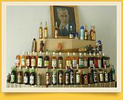 Filatow-Museum. Weingut des Professors Chowrenko