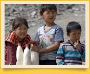 Kumys. Uraltes Getränk der Nomaden