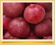 Pomegranate. Scarlet Grains of Health