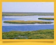 Озеро Судочье