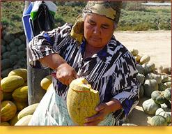 Uzbek melons