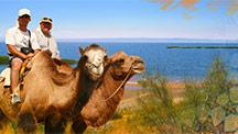 На Корабле по Пустыне