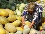 Melons ouzbeks. Melons de l'Ouzbékistan