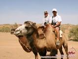 Camel riding. Tour To Aydarkul Lake via Kyzyl-Kum desert
