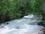 Mountain stream. Tian-Shan, Kyrgyzstan