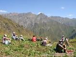 Paso Ashuu (2551 m)