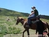 Конные походы в Узбекистане