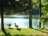 Парк развлечений «Ташкент-Лэнд». Парки и места отдыха Узбекистана