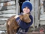 В сельском дворе