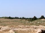 Site Dalvarzintépé. Termez, Ouzbékistan