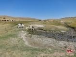 Рядом с палаточным лагерем