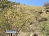 Пещера Пешогор