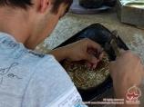 Die Prägung nach dem Kupfer in Usbekistan